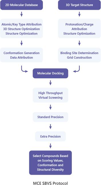MCE SBVS Protocol